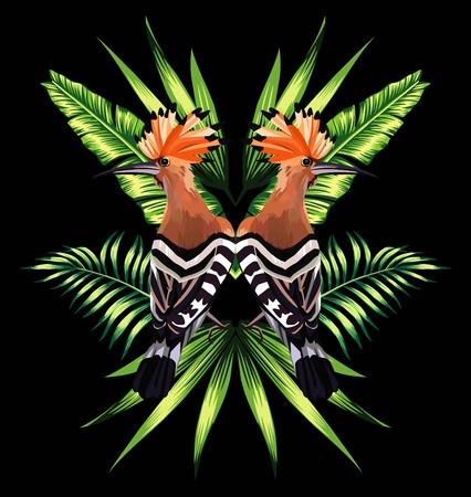 Mooie vogel met tropische banaanbladeren in spiegelbeeld op zwarte achtergrond.