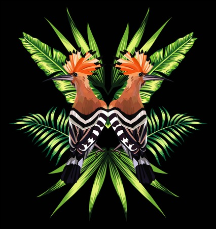 Beautiful bird with tropical banana leaves in mirror image on black background.