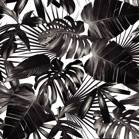 Graphic plant palm leaf tropic. Print black and white background style, exotic floral jungle. Trendy seamless pattern. Fashion vintage summer wallpaper Hawaiian backdrop.