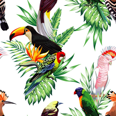 maccaw: Tropical animals birds parrot maccaw and toucan on branch exotic floral banana palm beach tree. Seamless wallpaper pattern flower Strelitzia. Decorative abstract design on a white background.