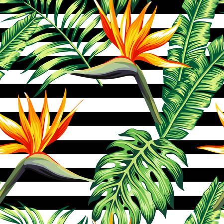 エキゾチックな熱帯植物は、バナナのヤシの葉、黒と白のストライプの幾何学的な背景の楽園ストレチア花で構成されます。花のトレンディなシー