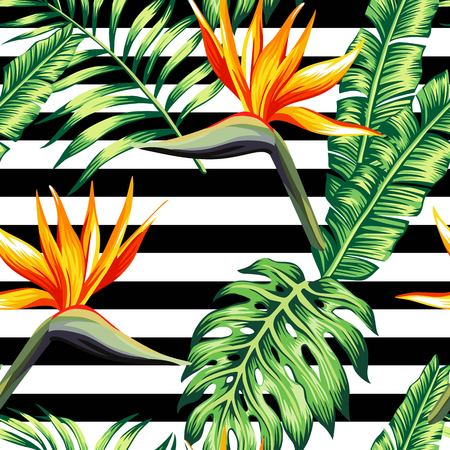 Exotic tropic plants composed of palm banana leaves, paradise Strelitzia flower on black and white stripe geometric background. Flower trendy seamless vector pattern. Hand drawn fashion wallpaper.
