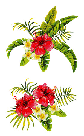 banana leaf: Tropic summer flower hibiscus and plumeria Seamless pattern with palm banana leaf and plants. Illustration