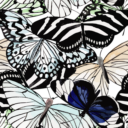 Beautiful fashion tropic insect butterfly hand drawn watercolor. Print jungle animal in black and white style on a white background. 向量圖像