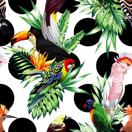 Pájaros exóticos con plantas tropicales sobre un fondo blanco con un círculo negro Foto de archivo - 66128381