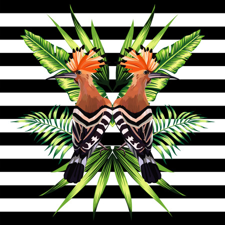 Abstract pattern illustration tropic animals hoopoe bird in a trendy mirror style on striped black and white background with a floral summer jungle banana palm leaves and plants