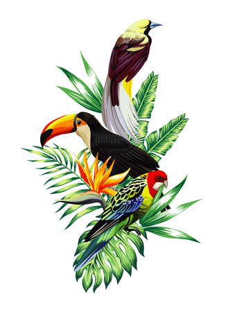 Floral composition exotic tropical birds toucan and parrot sitting on a palm banana leaves and Strelitzia flower.