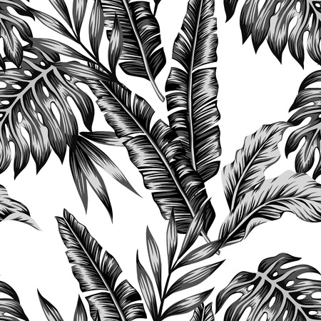 Tropic plants floral seamless jungle pattern. Print background of fashion summer wallpaper palm banana leaves in black and white gray style Illusztráció