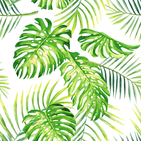 exotic plant: Hand drawn watercolor tropic monstera leaves and palm. exotic jungle painting plant seamless summer pattern