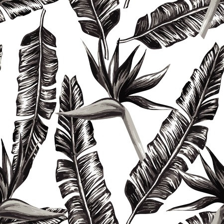 Strelitzia and banana leaves black and white seamless pattern background
