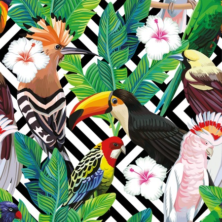 Seamless a composition of tropical bird toucan, parrot, hoopoe and palm leaves with white hibiscus flowers on black white geometric background