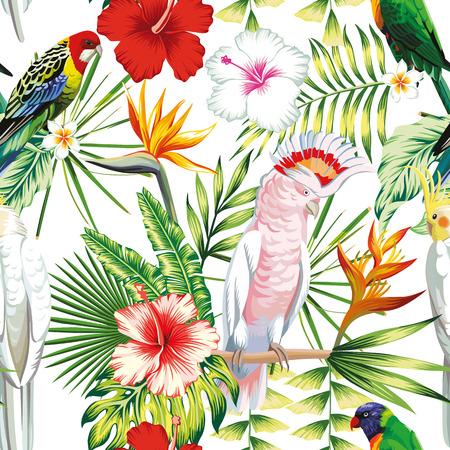 Tropic exotic multicolor birds parrot.