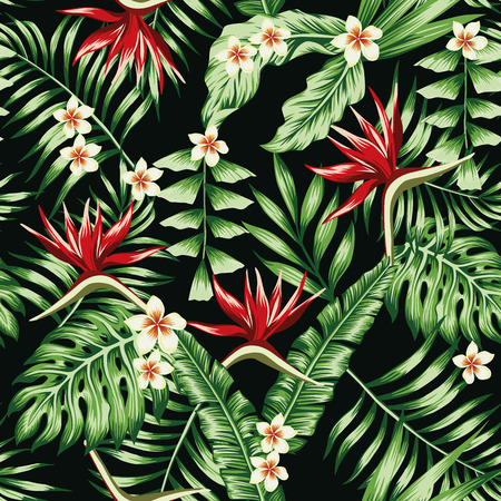 Tropical plants leaves and flowers of the frangipani plumeria and the bird of paradise. Seamless beach pattern on black background wallpaper Vettoriali