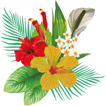 ハイビスカスの花や熱帯の葉とプルメリアの花の組成物。白い背景の上ビーチ壁紙