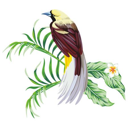 植物の花とエキゾチックな単一熱帯鳥を印刷白の壁紙の背景