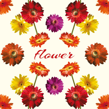 Beautiful mirror bouquet of red, yellow, orange, purple gerber flower isolated. Cool vector wallpaper on the light background