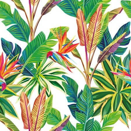 Día alegre y soleado en la selva tropical. Aves del paraíso y hojas vector composición de patrones sin fisuras. Fondo blanco Ilustración de vector