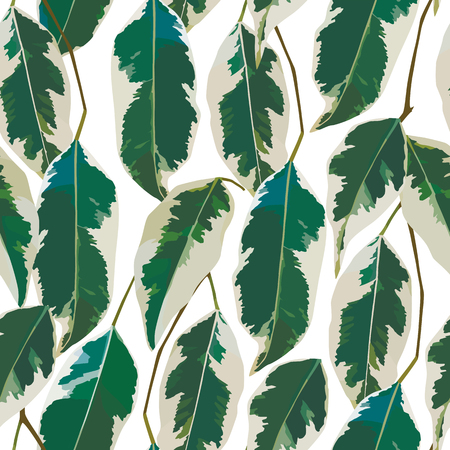 A Vector illustration of white leaves or feather design seamless pattern o green background Ilustração