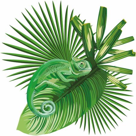 Samenstelling van een kameleon op een tropische blad vectorillustratie Stock Illustratie