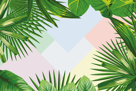 Exotic spring frame of tropical leaves on the geometrical pastel color background