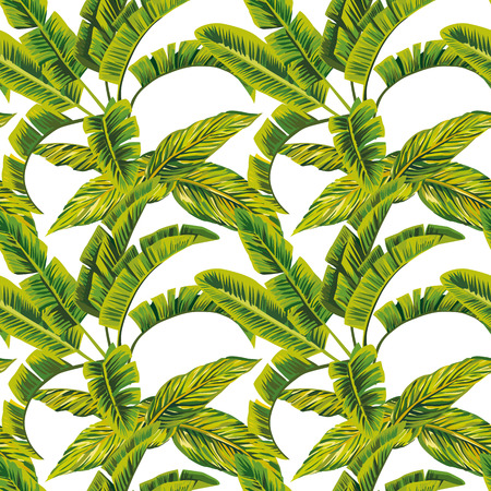 Exotic composition banana leaves seamless pattern on the white background. Fabric vector beach wallpaper