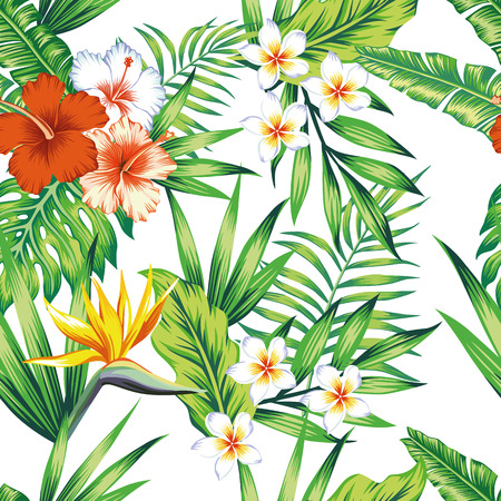 Bright exotic tropical flowers hibiscus bird of paradise and green leaves seamless pattern beach vector wallpaper on the white background. Vector Illustration