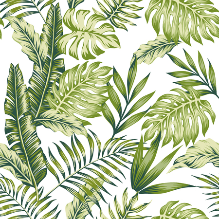 Pastel green tropical jungle leaves palm banana white background seamless pattern composition