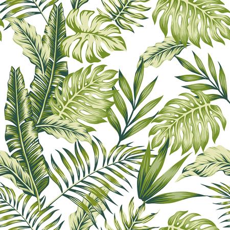 Selva tropical verde pastel hojas palma plátano fondo blanco composición de patrones sin fisuras