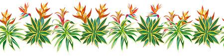 Exotic succulent cactus ribbon tropical plants flowers bird of paradise strelitzia seamless pattern composition white background