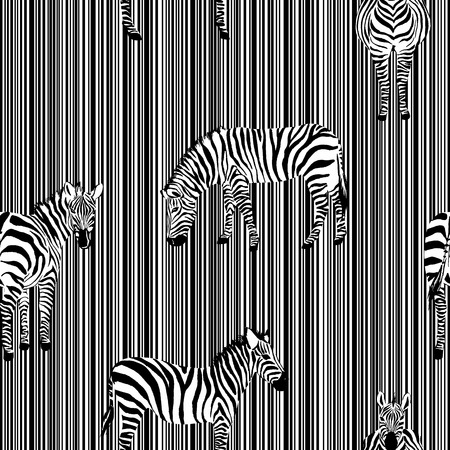 Exotic animal zebra on the black white stripe background seamless illustration pattern vector monochrome wild  イラスト・ベクター素材