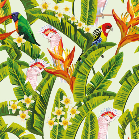 Exotic tropical birds parrot in the green jungle flowers frangipani plumeria white background