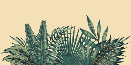 Jungle exotic composition tropical leaves pattern vintage green invitation holiday banners with palm 写真素材 - 109775404