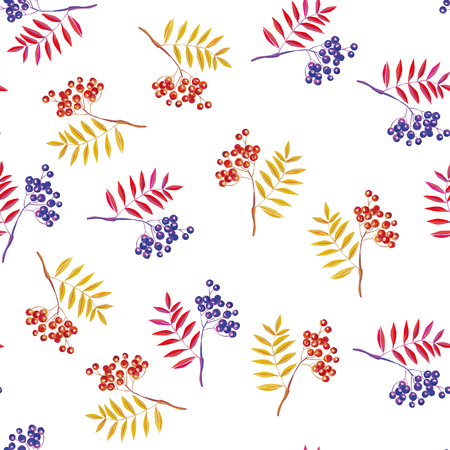 Rowan branches and rowanberry seamless vector pattern on the white background