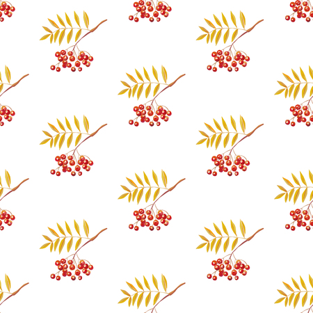Rowan branches seamless flat vector pattern white background  イラスト・ベクター素材