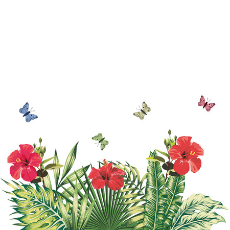 Summer floral composition red hibiscus flowers butterflies tropical plants white background. Vintage vector