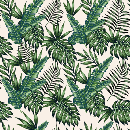 Exotic tropical palm leaves monstera beige background. Vector seamless pattern wallpaper