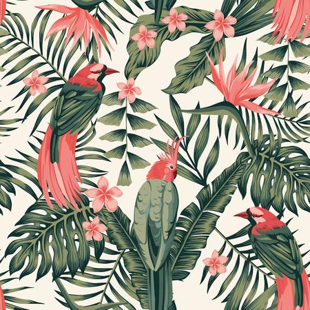 Hojas tropicales, flores frangipani, aves del paraíso, loro colores abstractos perfecta imagen vectorial realista