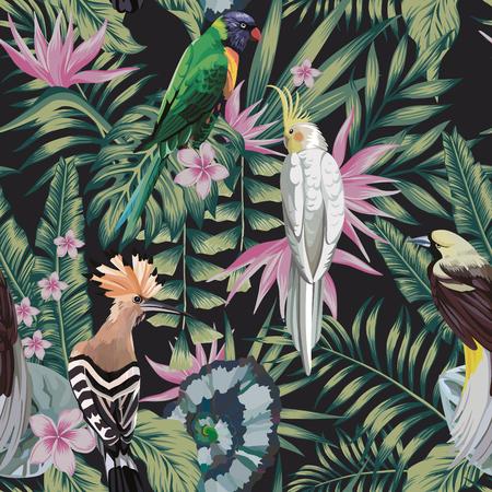 Loro de aves tropicales, abubilla, plantas, hojas, flores, frangipani (plumeria), color abstracto, fondo negro. Patrón de vector transparente
