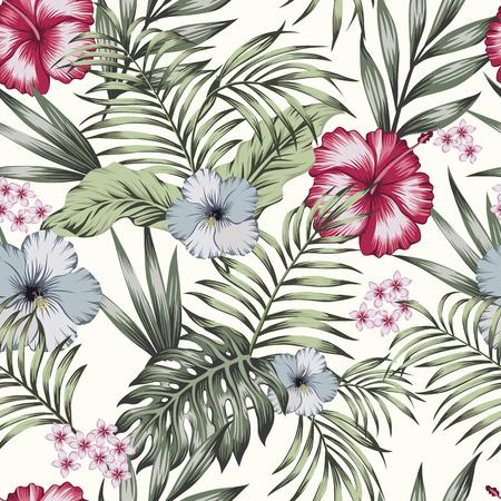 Fleurs exotiques tropicales hibiscus, frangipanier (plumeria) et palmier, composition de feuilles de bananier. Modèle sans couture de vecteur sur fond blanc