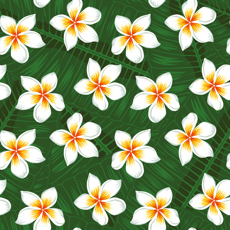 Beautiful realistic flowers white plumeria on the green tropical leaves background seamless vector pattern. Ilustracja