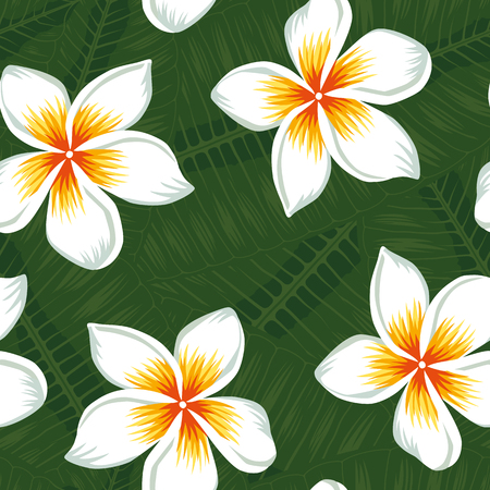 Beautiful realistic flowers white plumeria on the green tropical leaves background seamless vector pattern. Beach design