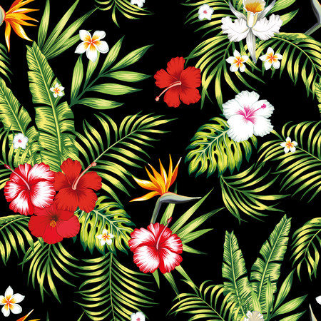Modèle botanique vectoriel réaliste sans couture de beauté d'hibiscus, de plumeria, d'orchidée, de fleurs d'oiseau de paradis et de palmier, de banane, de feuilles de monstera sur fond noir