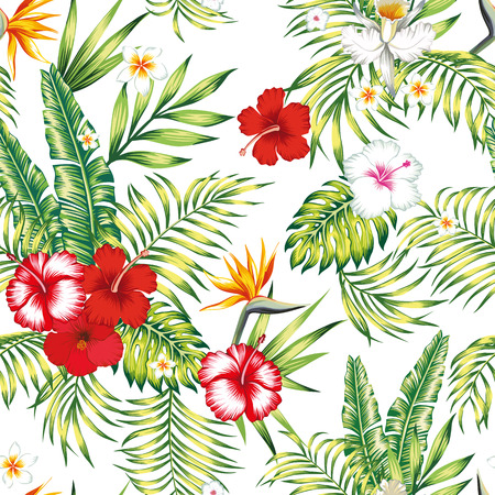 Beauty seamless realistic vector botanical pattern from hibiscus, plumeria, orchid, bird of paradise flowers and palm, banana, monstera leaves on the white background