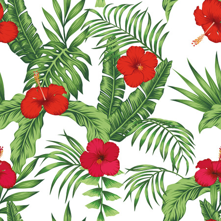 Fleurs tropicales exotiques hibiscus rose et rouge, monstera vert, motif de feuilles de palmier sans couture sur fond blanc. Fond d'écran de vecteur de plage