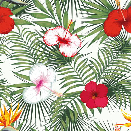 Tropical exotic flowers bird of paradise and white, red hibiscus, green plants seamless vector pattern on the white background Banco de Imagens - 122038838