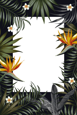 Vector night tropical design for flyer or banner. Vacation summer poster with tropical flower and leaves. Illustration with strelitzia, plumeria jungle exotic leaf palm and monstera on the black night background. Vertical layout. Illustration