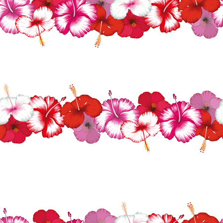 Exotic stripes of flowers hibiscus on the white background. Seamless vector pattern