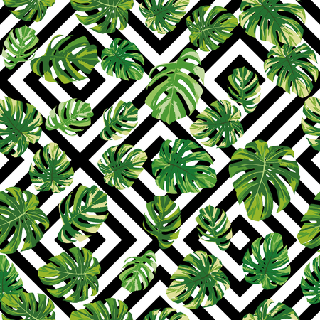 Green realistic tropical monstera leaves seamless pattern on the black white geometric background. Creative vector illustration