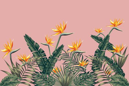 Tropical green palm banana monstera leaves with beautiful flowers bird of paradise, Strelitzia. Realistic vector jungle illustration beach pink background. Print pattern decorative ornament wallpaper.