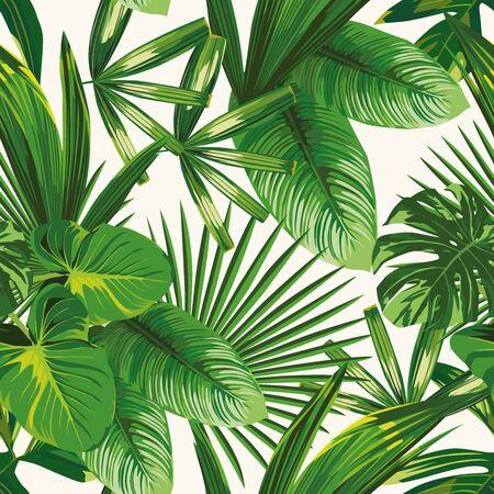 Hojas verdes naturales tropicales exóticas composición vectorial sobre fondo blanco. Fondo de pantalla de playa de patrones sin fisuras